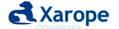 Boyero de Berna,Clinica veterinario,boyeros de berna,cachorros,España,Kennel,criaderos,boyeros,cachorro,criadores,España,